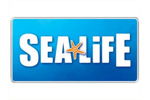 Sea Life - Vacanze le Palme